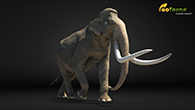 Southern mammoth 1