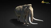 Southern mammoth 2